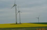 Asociațiile din sectorul regenerabilelor, apel urgent către Primul Ministru, către Ministrul Energiei și către Președintele ANRE